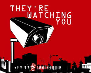 They Are Watching You  | No BS Job Search Advice Radio